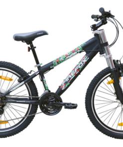 FIREFOX BAD ATTITUDE V BICYCLE 24